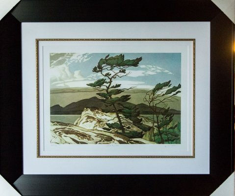 White Pine - Group of Seven